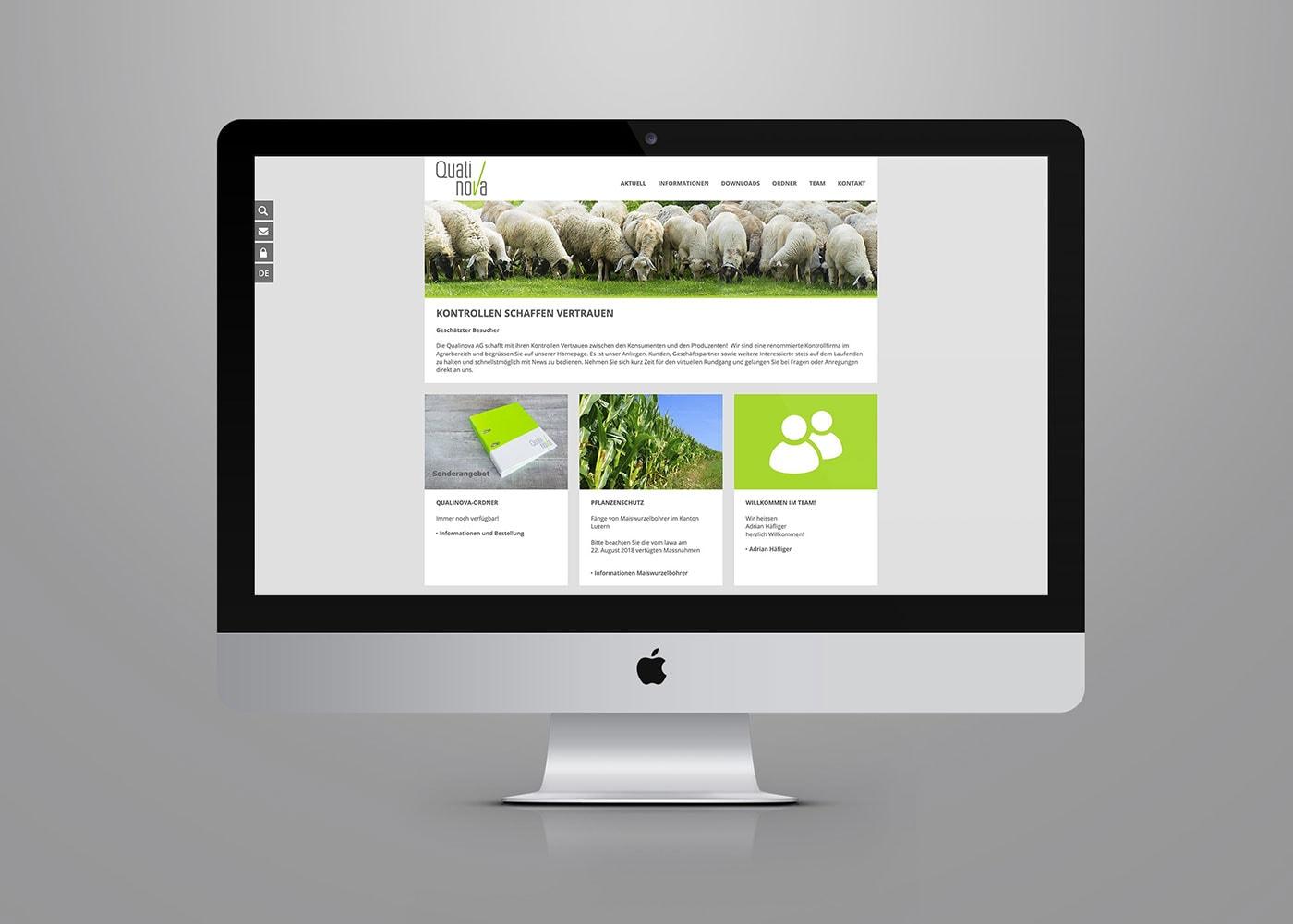 Webdesign Qualinova