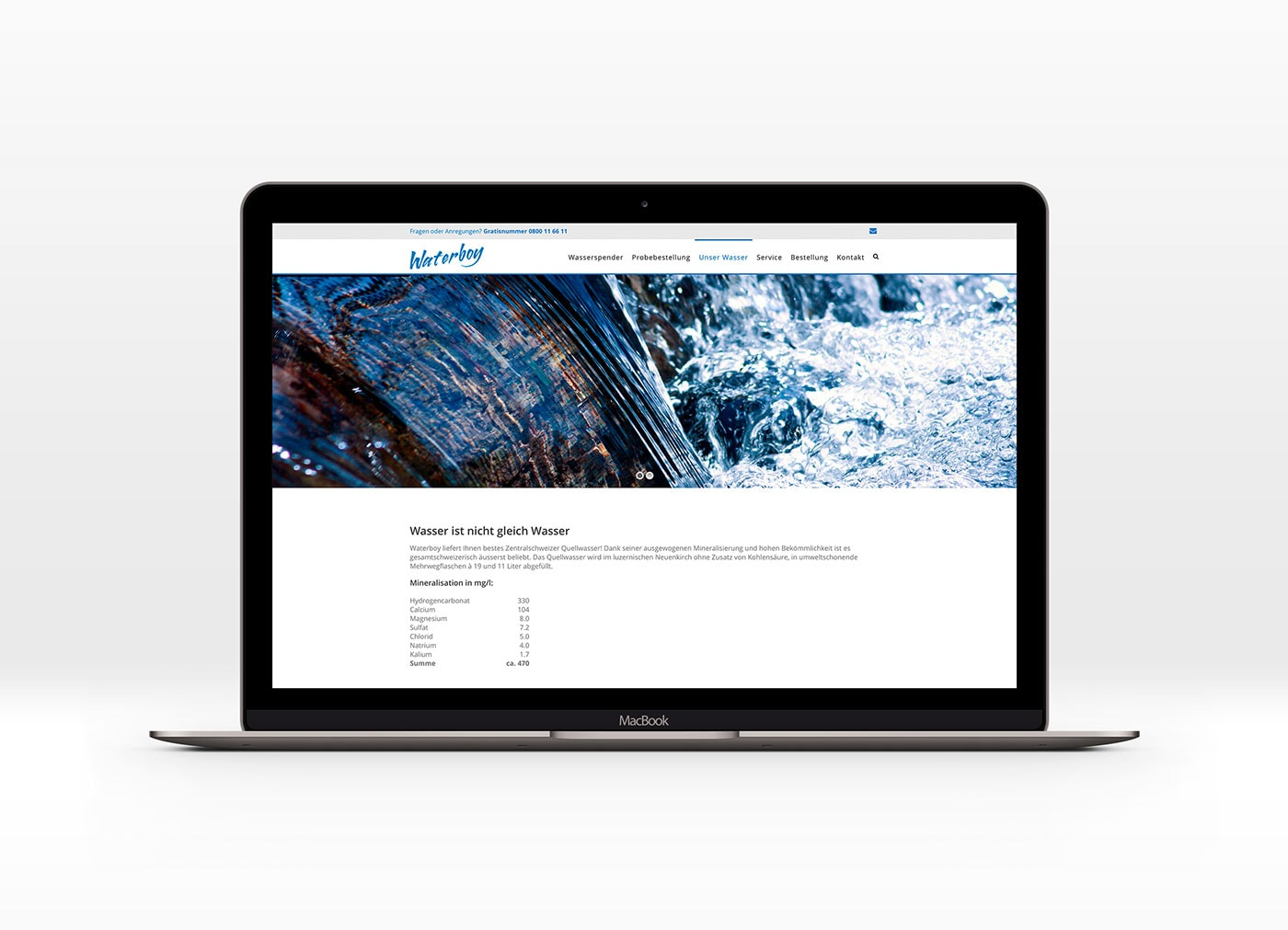 Webseite Waterboy